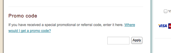 finding the promo code box